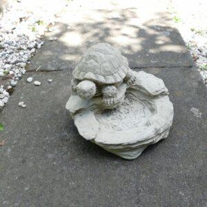 Schildkröte am Wasser 4,1Kg | 18x21x21cm | sand